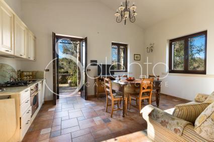 Bed and Breakfast - Uggiano La Chiesa ( Otranto ) - Casa Ulmi - Tra gli Ulivi (Trilocale n. 1A)