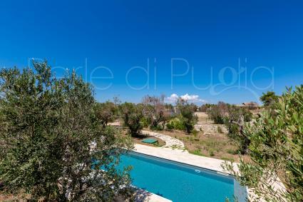 La piscina, vista dall`alto, è immersa nella natura